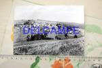 Gembes (Daverdisse) - Daverdisse