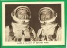""""""" GEMINI IV """" ( 3 JUIN 1965 )    Mc. DIVIT ET WHITE - Espace"""