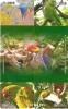 PUZZLE DE 4 TARJETAS DE CHINA DE LOROS (PARROT-GUACAMAYO) - Loros