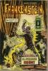 FRANKENSTEIN Reliure  N° 3250 ( N° 15 + 16 )  - ARTIMA 1980 - Frankenstein