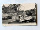 Carte Postale Ancienne : PAU : Vue Prise Du Parc Beaumont , Anime - Pau