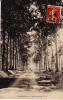 - 02 - LESCHELLES - L´Allée Du Bois  - - Frankreich