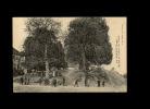 23 - NAILLLAT - Un Coin De La Place - Les Tilleuls - 916 - Arbres - France