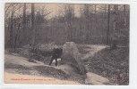 00259 Dolmen Menhirs Meudon Clamart Pierre Aux Moines - Dolmen & Menhire