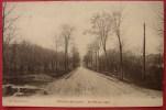 Dep 45  Cpa  CHATILLON Sur LOIRE , Arrivée Du Pays   (26) - Chatillon Sur Loire