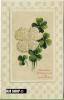 Um 1910/1920 Ansichtskarte Blumen,  Gelaufene Karte - Botanik