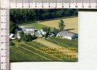 CARTONNETTE PUBLICITAIRE  - VERGERS De La TAILLE PIONNE  -  SARS POTERIES  - Belgique - Plaques Publicitaires