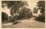 Modave - Route De Bonne à Modave - Attelage ( Voir Scan ) - Modave