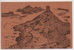 Ref 31 Carte Postale En Liège Corse Iles Sanguinaires - Cartes Postales
