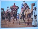 Nigeria Emir's Musicians At Durbar Camels Postcard - Nigeria