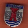 18003-esch Sur Alzette.1906.1956..tres Ancienne Epingle à Cravate.. - Villes
