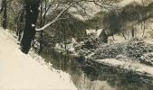 Cpa 1919 A Winter Scene In Jesmond Dene .. Newcastle On Tyne - England