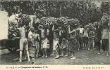 Culture De La Banane : Chargement De Bananes, Afrique Equatoriale Française. 2 Scans. - Cultures