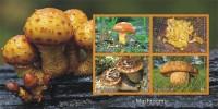 MUSHROOMS CHAMPIGNONS PADDESTOELEN PADDENSTOELEN MUSHROOMS PILZE SETAS FUNGHI  MNH Imperforated CINDERELLA - Fantasy Labels