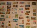 Nouvelle Calédonie Collection De 420 Enveloppes Et Cartes 1er Jour