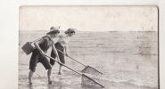 PECHEUSES DE CREVETTES Thème Pêche à Pied - Pêche