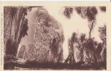 Environs De Bormes. Le Fort Et Anse De Brégancon -  Neuve TTB - Bormes-les-Mimosas
