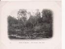DETROIT DE MAGELLAN 225 BAIE FORTESCUE UNE RIVIERE  1903 - Chili