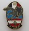 INSIGNE MILITAIRE HQ COY  CCOS DU 420° DSL  21° MANDAT OPEX FINUL LIBAN - Army