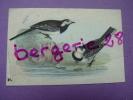 CHROMO IMAGE Fromagerie GROSJEAN OISEAUX DE NOS PAYS La Bergeronnette à Tête Noire N°21 (oiseau) - Cromos