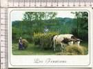 LES FENAISONS -   Les Fourchées Doivent être Bien Réparties Pour Faciliter Le Transport  - Vieux Métiers Et Traditions - Cultivation