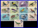 GAMBIA 1965 INDEPENDENCE O/PRINT ON BIRDS ISSUE SC# 193-205 VF MNH - Gambia (1965-...)