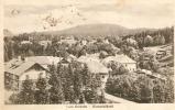 0430. Im 1921 Gelaufene Ansichtskarte Vom Borszék, Borsec. T/1-2. - Romania
