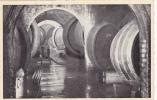 Caves Cooperatives Des Vignerons De Wellenstein S/Moselle, Grand Duche De Luxembourg, 1910-1920s - Cartes Postales