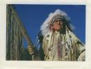 Etats Unis Chef Indien Carte Glacée Ayant Circulé Timbre World Cup USA 94 BE - Ethnics