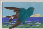 BIRD POSTCARD - REAL FEATHERS - Altri