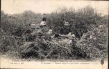LL430: GUERRE 1914-1915 EN ARGONNE, FRANCE ~ ZOUAVES EN EMBUSCADE AVEC UNE MITRAILLEUSE - Guerre 1914-18