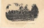 110Ch     GUINEE CONAKRY JARDIN DU PALAIS ENTRE 1er ET 2eme BOULEVARD (DOS NON DIVISE) - Guinea