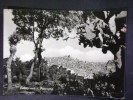 SICILIA -CATANIA -CALTAGIRONE -F.G. LOTTO N°116 - Catania