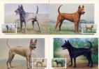 THAILAND - 4 MC ,  Maximumkarten  -  Dogs  Ridgeback - Dogs