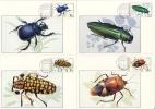 THAILAND - 8 MC , Maximumkarten  -  Käfer , Libellen - Insects