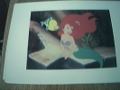 Postcard Unused Walt Disney The Little Mermaid - Disney