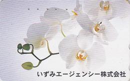 Télécarte Japon / 110-016 - Fleur ORCHIDEE - ORCHID Flower Japan Phonecard - Blume Telefonkarte - ORQUIDEA - 1163 - Fleurs