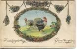 EMBOSSED THANKSGIVING - 2 TURKEYS - PRE-WWI - Thanksgiving