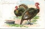 THANKSGIVING DAY - 2 TURKEYS 1907 - Thanksgiving