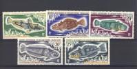 TAAF  -  1971  :  Yv  34-38  ** - Unused Stamps