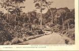 13G      CAMEROUN ROUTE DES ENVIRONS DE YAOUNDE - Cameroon