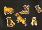 LOT De 6 Chromos Decoupis à Paillettes - Chiens Chiots- Race - York - Labrador - Berger Allemand - Dogs Puppies - Race - - Dieren