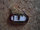 "1 Pin""s Cheval  Hippodrome  DE VICHY Trotteur - Pin's & Anstecknadeln"