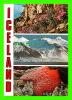 ICELAND - PARADICE OF BOTANISTS, GEOLOGISTS AND TOURISTS - LITBRA H.F. - - Islande