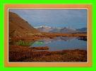 ICELAND - I LONI - AUSTUR-SKAFTAFELLSSYSIA - PUB BY SOLARFILMA - - Islande
