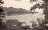 83 CARQUEIRANNE - Vue Panoramique Du Port Des Salettes Et De La Pinède - Carqueiranne