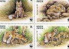 Kyrgyzstan 1999.WWF.Vulpes Corsac. 4v.MNH**.Steppe Fox.Renard Corsac.Zorro Corsac.Fox.Vos.Vossen.Wildlife. Foxes. New! - Kyrgyzstan