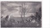 18759 DOL DE BRETAGNE - MAISON GUILLOTIERE, SAINT SAMSON ARRIVE ( Diaporama Commentés ) 1590 CAP - Dol De Bretagne