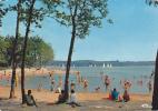 18767 Sille Le Guillaume, Sille Plage, Foret Domaniale. Lac ; E 72.334.31.1.0470 Cim - Sille Le Guillaume