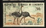 CAMEROUN  PA N° 55 Oblitéré Cote 2,50€ Au Quart De Cote
